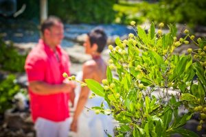 Smith's Cove Beach Wedding, always different, always beautiful image 3